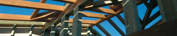 Architettura soffitto case in legno